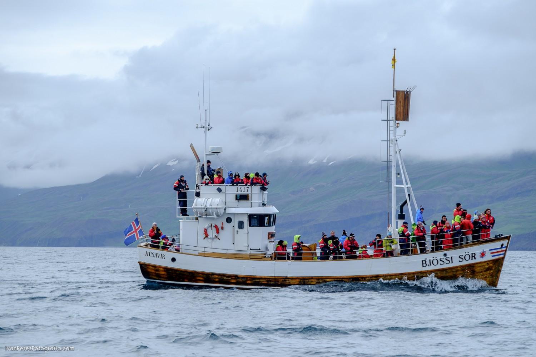 ISLANDIA-21