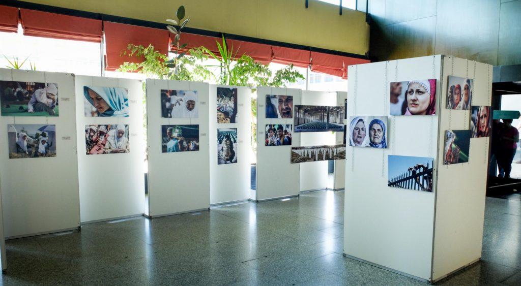 EXPOSICION AYTO FUENLABRADA (1 de 12)
